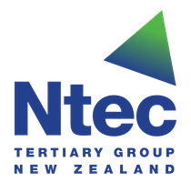 National Technology Institute logo